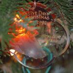 The 12 (Leadership) Days of Christmas