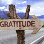 Five Ways Gratitude Will Change Your Life
