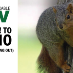 Remarkable TV: Say No! to FOMO