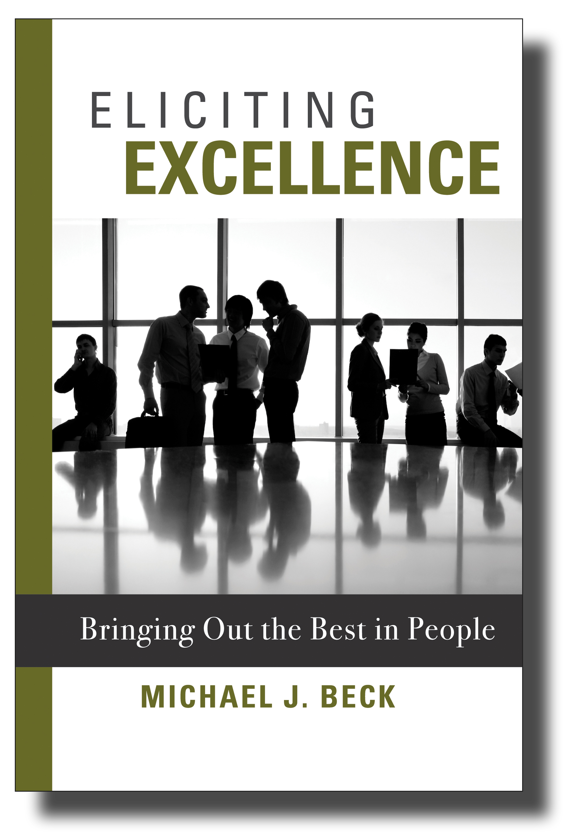 Eliciting-Excellence
