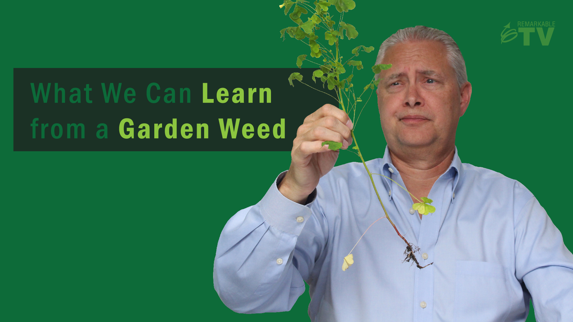 Video splash image for: What We Can Learn From a Garden Weed video with Kevin Eikenberry