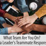 leader as teammate